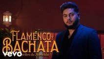 DAVILES DE NOVELDA – FLAMENCO Y BACHATA